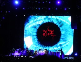 The Who14